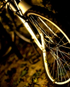 Bent Bike Wheel by tanvach via Flickr