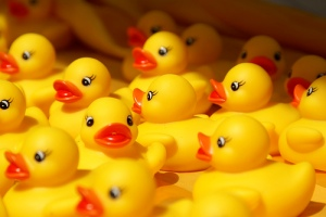 Rubber Ducks by Felix63 via Flickr