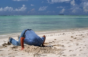 Head in Sand by tropical.pete via Flickr