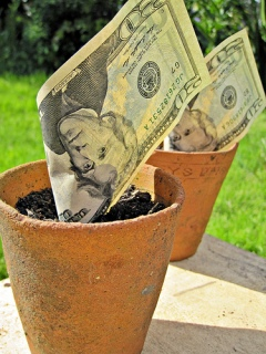Growing Money by Images_of_Money via Flickr