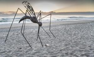 Mosquito by Ibrahim Koc