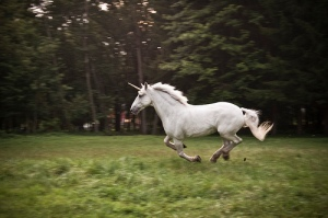 Unicorn by Rob Boudon via Flickr